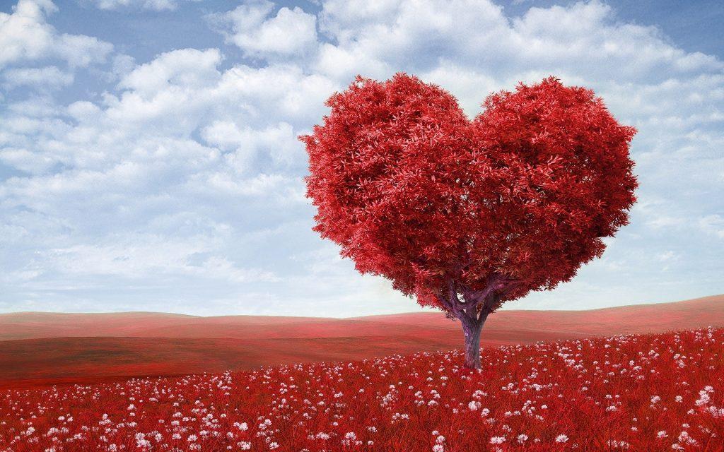 Porady miłosne dla par