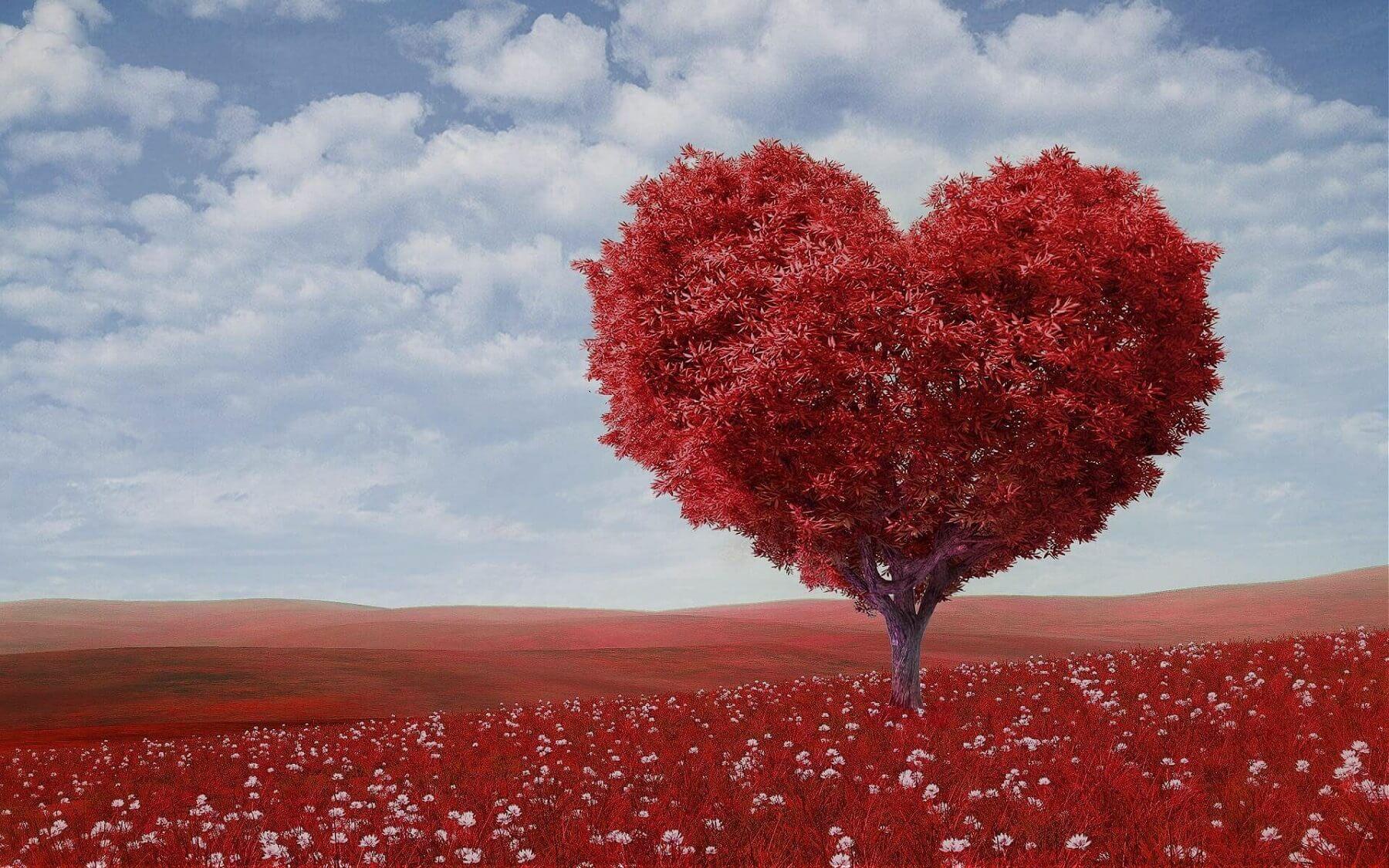 Porady miłosne